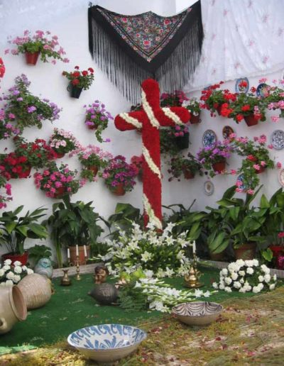 Cruces de Mayo 7