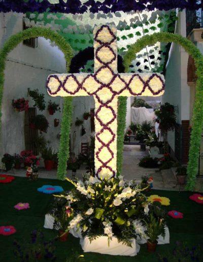 Cruces de Mayo 8