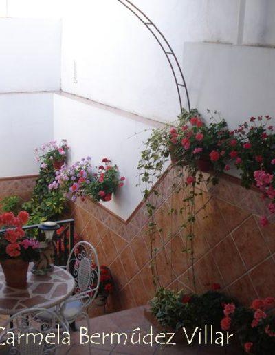 Patios y Balcones Campeños 20