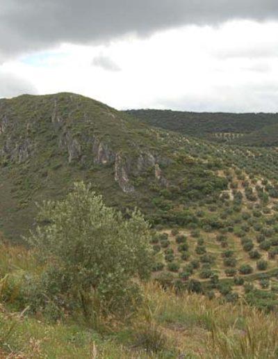 Ermita y Mirador 6