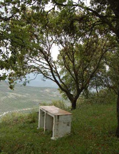 Ermita y Mirador 7