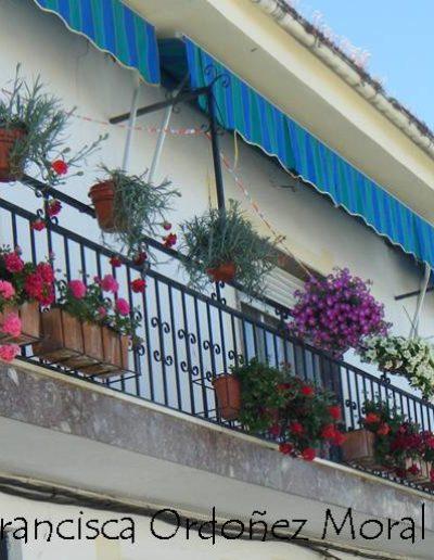 Patios y Balcones Campeños 38