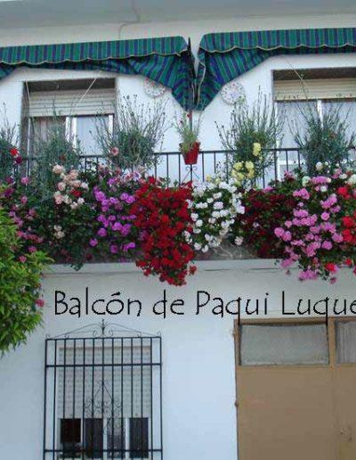 Patios y Balcones Campeños 39