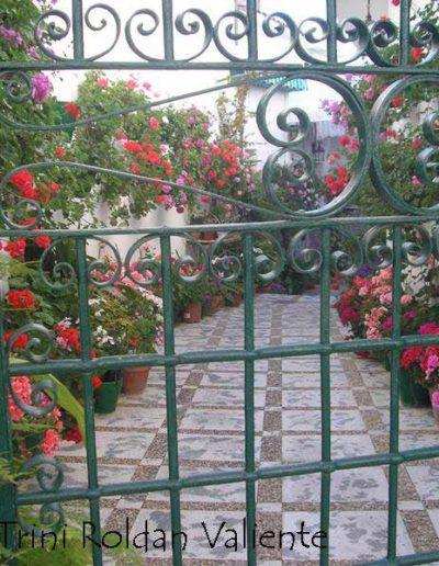 Patios y Balcones Campeños 48