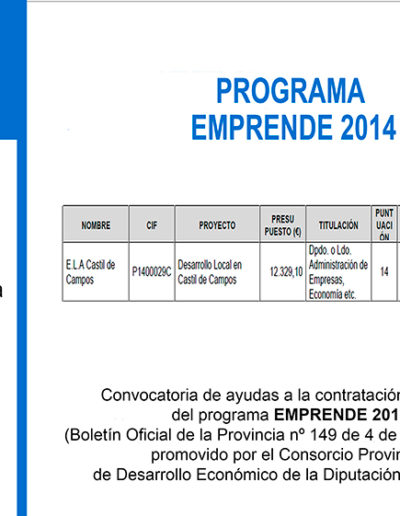 Subvenciones otorgadas a la E.L.A. de Castil de Campos 2.015 8
