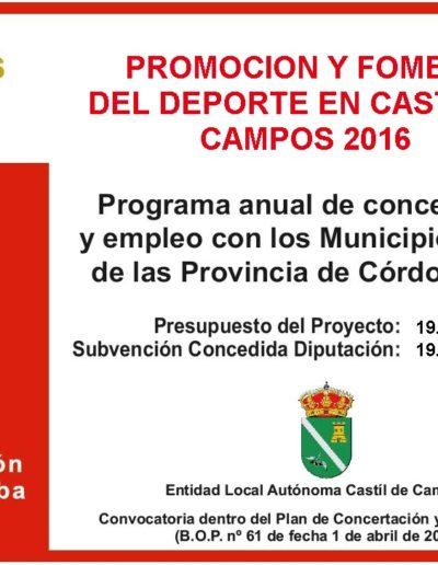 Subvenciones otorgadas a la E.L.A. de Castil de Campos 2.016 8
