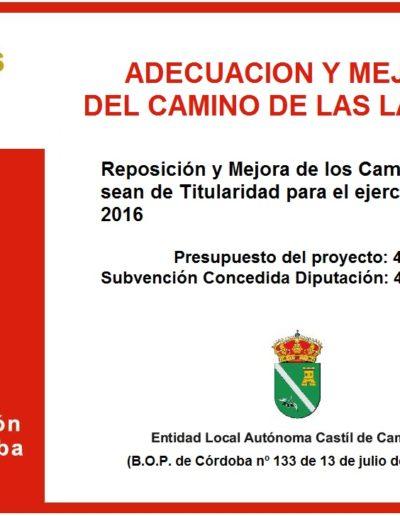 Subvenciones otorgadas a la E.L.A. de Castil de Campos 2.016 13