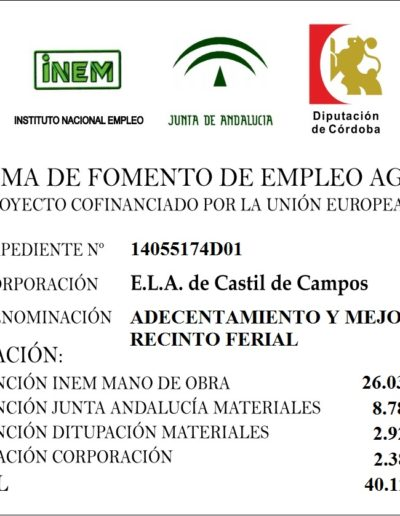 Subvenciones otorgadas a la E.L.A. de Castil de Campos 2.017 10