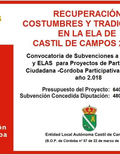 Subvenciones otorgadas a la E.L.A. de Castil de Campos 2.018 6