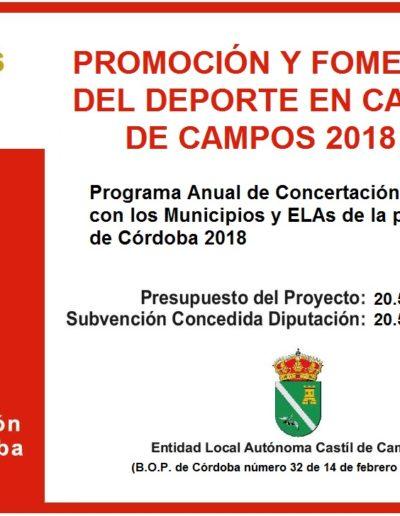 Subvenciones otorgadas a la E.L.A. de Castil de Campos 2.018 3