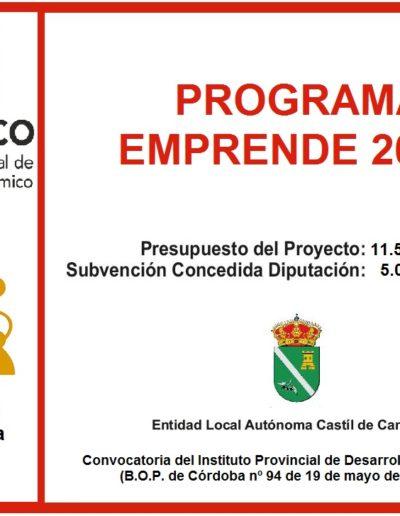 Subvenciones otorgadas a la E.L.A. de Castil de Campos 2.017 15