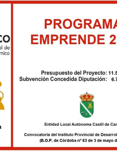 Subvenciones otorgadas a la E.L.A. de Castil de Campos 2.019 12