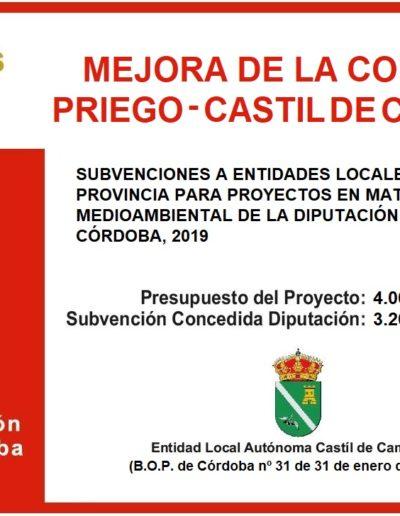 Subvenciones otorgadas a la E.L.A. de Castil de Campos 2.019 13