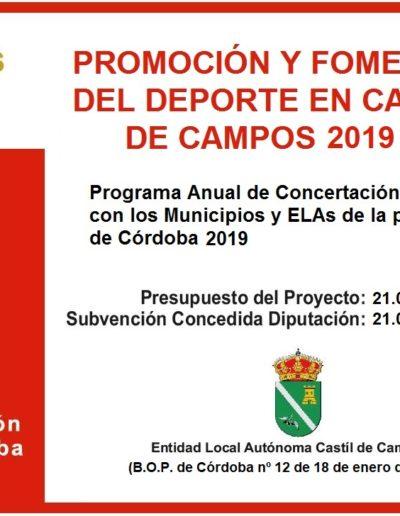 Subvenciones otorgadas a la E.L.A. de Castil de Campos 2.019 6